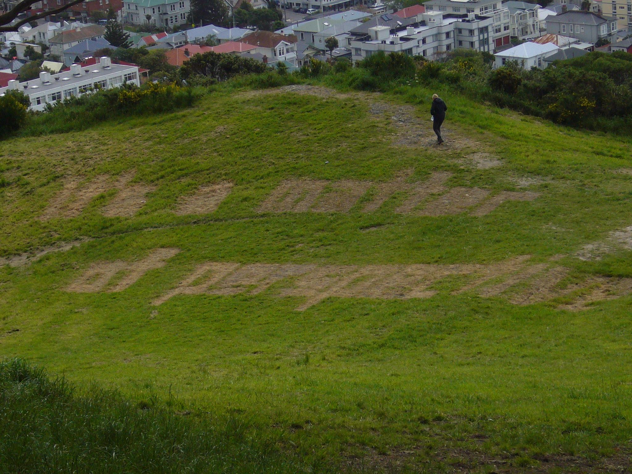 Woche 1: Nachhaltiger leben – macht das Sinn?